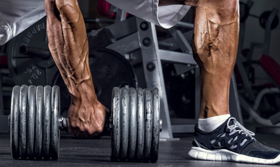Science For Humans #1823: The Secret To Huge Forearms and Calves