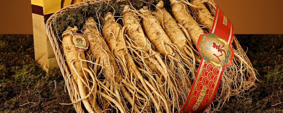 Science For Humans #1835: Ginseng Reviewed