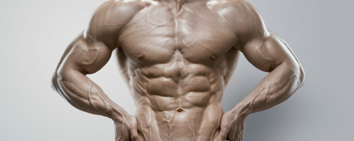 Science For Humans #1929: 16 Weeks to Shredded and Muscular