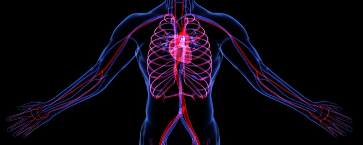 SFH 2144: Tricks & Supplements to Improve Vascular Health